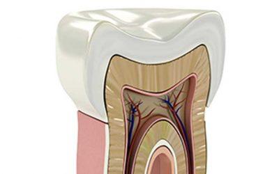 Curso de Atualização em Endodontia
